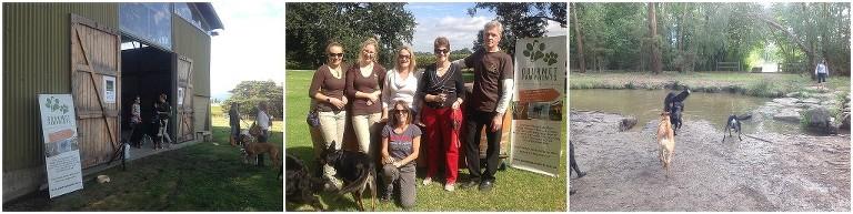 doggy-vineyard-tours_0463