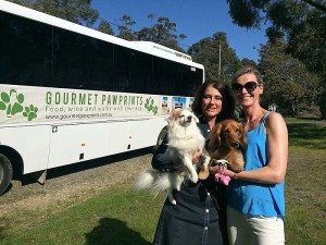 Melbourne Weekender Channel 7 Doggy Winery Tour