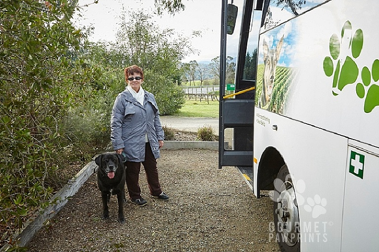 Gourmet Pawprints Doggy Winery Tours - Yarra Valley 24/7/16