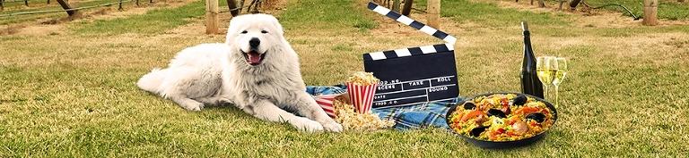 Doggy Winery Cinema Gourmet Pawprints pawfect