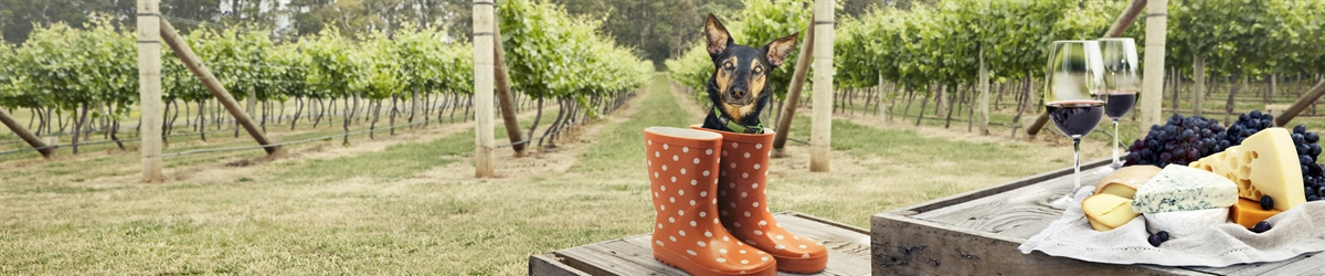 Doggy Winery Tours Pawfect Gourmet Pawprints Banner 1