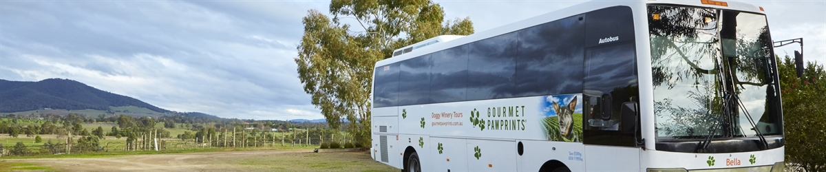 Doggy Winery Tours Pawfect Gourmet Pawprints