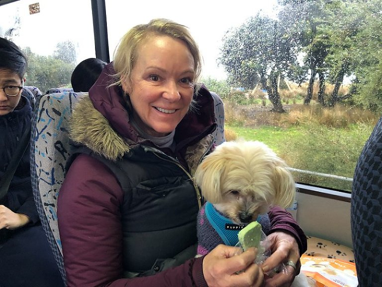 Dog Friendly Experiences Truffles